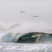 puerto-surf-clase-espanol-02